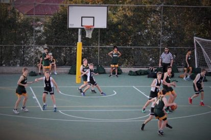 daly basketball courts